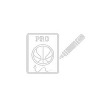 Pizarra Pro Baloncesto